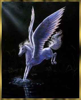 unicorn111.jpg